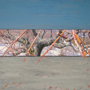Pommier_Rameaux, Techniques mixtes sur toile, 36 x 36po, 2014