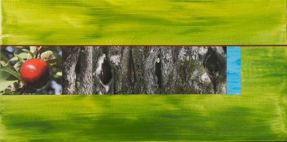 Pomme-6 Noeuds_2015_Impression numérique de qualité archives et acrylique sur toile_12x24po